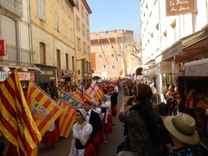 7000 catalans per la llengua a Perpinyà